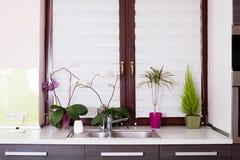 Κλειστό παράθυρο κουζινών με τα λουλούδια Στοκ Εικόνες