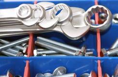 κλειδιά καρυδιών μπουλ&omi Στοκ Εικόνες