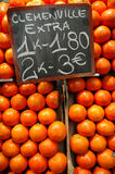 κλημεντίνες Στοκ φωτογραφία με δικαίωμα ελεύθερης χρήσης