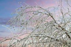 Κλιματική αλλαγή - θύελλα πάγου Στοκ Φωτογραφίες