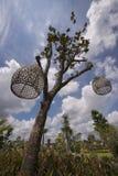 Κλουβί πουλιών επάνω από το tree〠' Στοκ Εικόνες