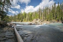 Κλωτσώντας ποταμός αλόγων, Βρετανική Κολομβία, Καναδάς Στοκ εικόνες με δικαίωμα ελεύθερης χρήσης