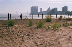 Κοίταγμα κάτω από το Lakeshore Στοκ φωτογραφία με δικαίωμα ελεύθερης χρήσης