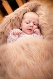 Κοίταγμα μωρών Στοκ Φωτογραφίες