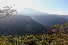 Κοίταγμα πέρα από ένα φαράγγι στην περιοχή Hogsback στοκ εικόνες