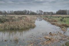 Κοίτη πλημμυρών Wildbrooks Arun Στοκ εικόνες με δικαίωμα ελεύθερης χρήσης