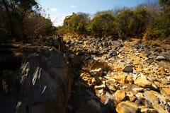 Κοίτη ποταμού ξηρών πετρών, Ankarana Μαδαγασκάρη Στοκ εικόνες με δικαίωμα ελεύθερης χρήσης