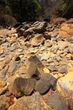 Κοίτη ποταμού ξηρών πετρών, Ankarana Μαδαγασκάρη Στοκ Εικόνες