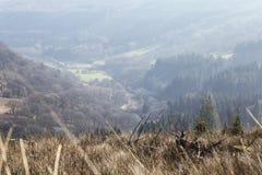 Κοιλάδα αναγνωριστικών σημάτων Brecon στην υδρονέφωση πρωινού στοκ φωτογραφία