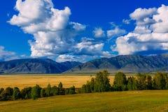 Κοιλάδα βουνών, χρυσό τοπίο πανοράματος φθινοπώρου, Σιβηρία, Δημοκρατ στοκ φωτογραφίες
