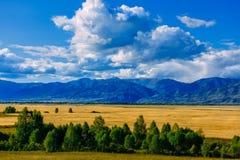 Κοιλάδα βουνών, χρυσό τοπίο πανοράματος φθινοπώρου, Σιβηρία, Δημοκρατ στοκ φωτογραφία