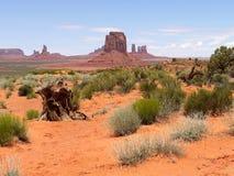 Κοιλάδα μνημείων με τη θαμνώδη περιοχή - ΗΠΑ Αμερική στοκ εικόνα με δικαίωμα ελεύθερης χρήσης