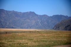 Κοιλάδα που περιβάλλεται γραφική από τα βουνά Altai, Σιβηρία στοκ εικόνες με δικαίωμα ελεύθερης χρήσης