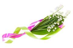 κοιλάδα ταινιών κρίνων λουλουδιών χρώματος Στοκ φωτογραφία με δικαίωμα ελεύθερης χρήσης