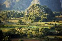 κοιλάδα της Κούβας vinales στοκ εικόνα με δικαίωμα ελεύθερης χρήσης