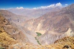 κοιλάδα του Περού colca Στοκ Φωτογραφία