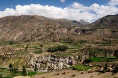 κοιλάδα του Περού colca Στοκ φωτογραφίες με δικαίωμα ελεύθερης χρήσης