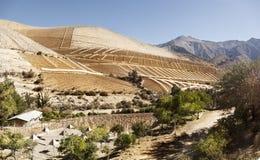 Κοιλάδα Elqui Βόρεια της Χιλής Στοκ εικόνες με δικαίωμα ελεύθερης χρήσης