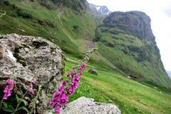 Κοιλάδα Glencoe στη σκωτσέζικη ορεινή περιοχή Στοκ φωτογραφίες με δικαίωμα ελεύθερης χρήσης