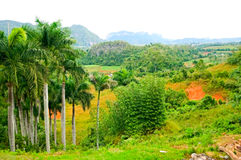 κοιλάδα vinales στοκ εικόνα με δικαίωμα ελεύθερης χρήσης