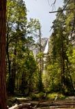Κοιλάδα Yosemite Στοκ εικόνες με δικαίωμα ελεύθερης χρήσης