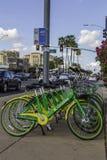 Κοινοτικά ποδήλατα ενοικίου σε μια στάση λεωφορείου σε Scottsdale Αριζόνα Στοκ Εικόνες