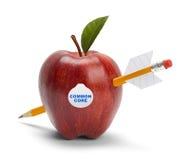 Κοινός πυρήνας Apple Στοκ Εικόνες