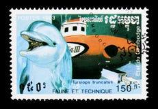 Κοινό δελφίνι Bottlenose (truncatus Tursiops), βάρκα μεγάλων θαλασσίων βαθών, s Στοκ Εικόνες