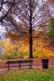κοινό κήπων της Βοστώνης Στοκ Φωτογραφίες
