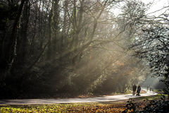 Κοινό πάρκο Στοκ φωτογραφίες με δικαίωμα ελεύθερης χρήσης