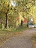 κοινό πάρκων στοκ φωτογραφίες