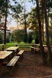 κοινό πάρκων Στοκ φωτογραφία με δικαίωμα ελεύθερης χρήσης