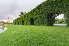 κοινό πάρκων Στοκ φωτογραφίες με δικαίωμα ελεύθερης χρήσης