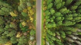 Κοιτάζοντας κάτω στο δρόμο στο δάσος των συναρπαστικών χρωμάτων φθινοπώρου, λαμπρότητα πτώσης, εναέριο flyover Άποψη Areial