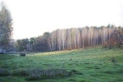 κοιλάδα άνοιξη Στοκ εικόνα με δικαίωμα ελεύθερης χρήσης