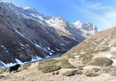 Κοιλάδα βουνών με yak Νεπάλ Στοκ Φωτογραφία