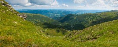 Κοιλάδα βουνών μια ηλιόλουστη ημέρα το καλοκαίρι Carpathians Στοκ Εικόνες