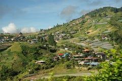 Κοιλάδα γεωργίας κοντά στο βουνό Kinabalu Στοκ Φωτογραφίες
