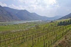 Κοιλάδα Δούναβη την άνοιξη Στοκ Εικόνες
