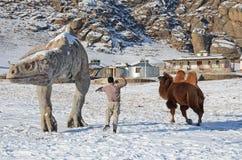 Κοιλάδα δεινοσαύρων στο εθνικό πάρκο Terelj Μογγολία Στοκ Εικόνες