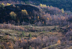 Κοιλάδα και landforms Στοκ Εικόνες