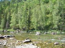 Κοιλάδα ποταμών βουνών, Altai, Ρωσία Στοκ φωτογραφίες με δικαίωμα ελεύθερης χρήσης