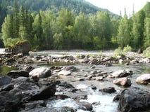 Κοιλάδα ποταμών βουνών, Altai, Ρωσία Στοκ φωτογραφία με δικαίωμα ελεύθερης χρήσης