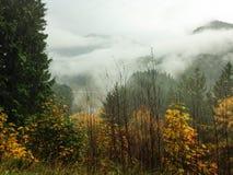 Κοιλάδα ποταμών Elwa Στοκ φωτογραφία με δικαίωμα ελεύθερης χρήσης