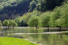 Κοιλάδα πλημμυρών ποταμών την άνοιξη του ποταμού Cerna στοκ φωτογραφία με δικαίωμα ελεύθερης χρήσης
