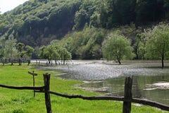 Κοιλάδα πλημμυρών ποταμών την άνοιξη του ποταμού Cerna στοκ εικόνες με δικαίωμα ελεύθερης χρήσης