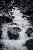 κοιλάδα ρευμάτων ποταμών βουνών elbrus Καύκασου περιοχής Μαύρος-λευκό Στοκ φωτογραφία με δικαίωμα ελεύθερης χρήσης