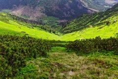 Κοιλάδα στα βουνά στοκ εικόνες