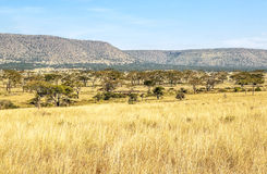 Κοιλάδα στην Τανζανία Στοκ Εικόνες