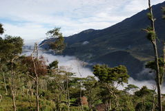 Κοιλάδα Baliem στην επαρχία της Παπούας Στοκ Φωτογραφία